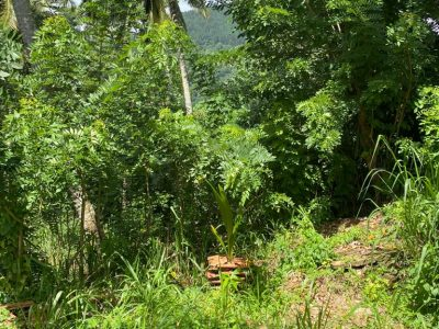 Land For Sale Kandy